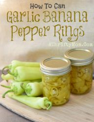 How to can Garlic Banana Pepper Rings, #Canning, #Garden, #peppers