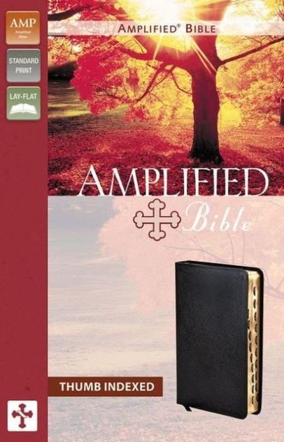 Amplified Bible-Black Bonded Leather Indexed