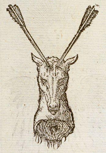 Pictura of Paradin, Claude: Devises heroïques (1557): Aemula naturae.