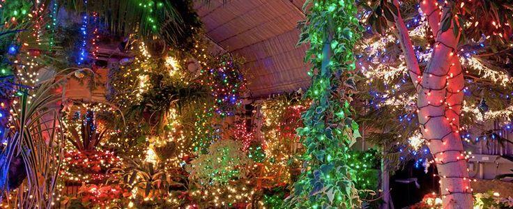 Holiday Lights at Gaiser Conservatory