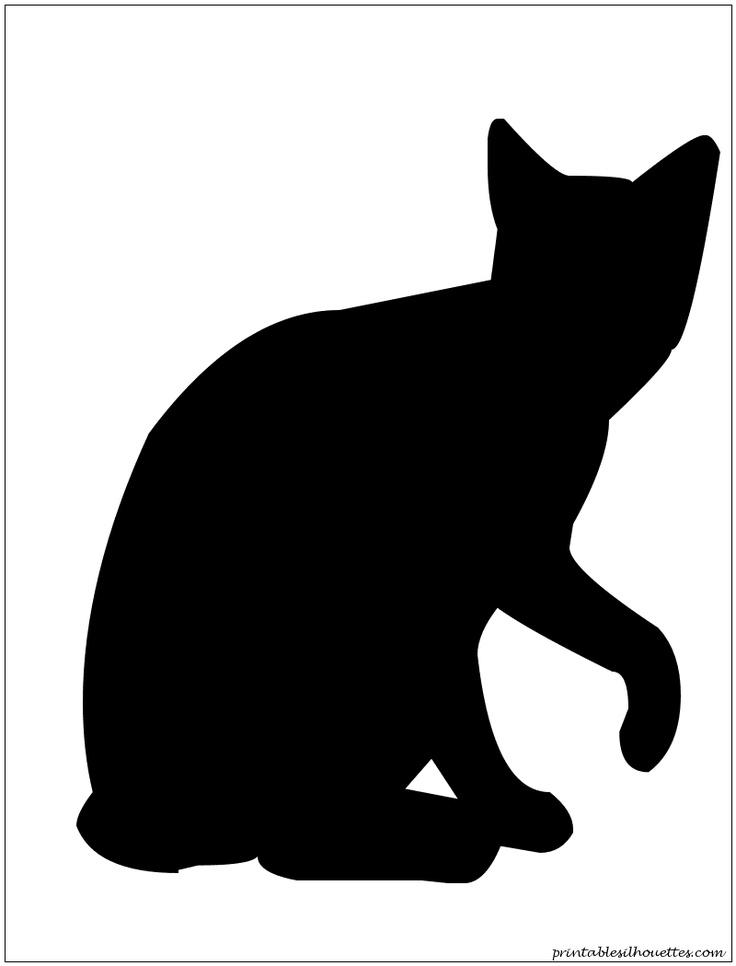 Cat12 Silhouette