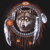 Il mondo dei Nativi Americani