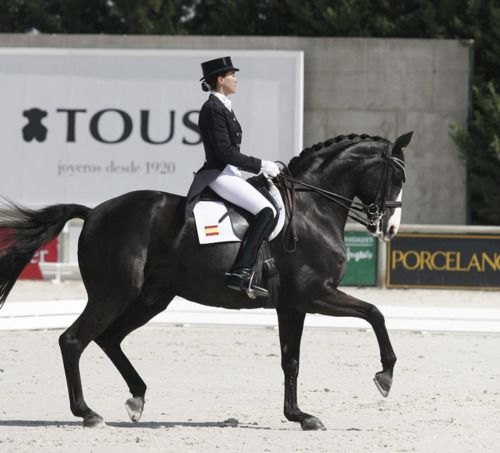 "Spain dressage legends: Beatriz Ferrer Salat and ""Faberge"""