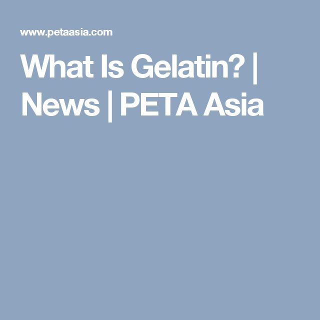 What Is Gelatin? | News | PETA Asia