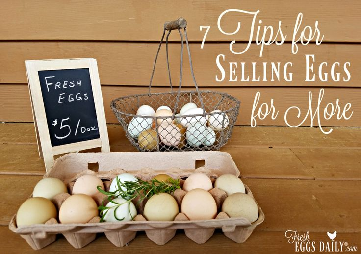 Fetch a premium price at the farmers market for your farm fresh eggs by using these clever tips.