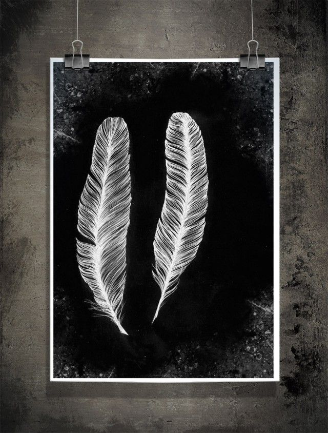 Feathers, black, illustration by Sofie Rolfsdotter #nordicdesigncollective #sofierolfsdotter #feathers #black #illustartion #white #poster #clippers