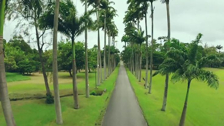 We love this video showing beautiful #Barbados from coast to coast!