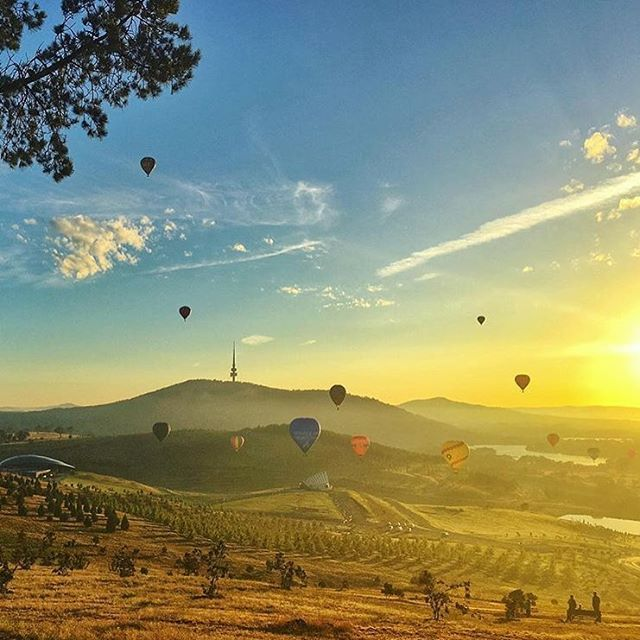 The Canberra Balloon Spectacular has officially begun! The Canberra festival is considered to be one of the best and longest running hot air...