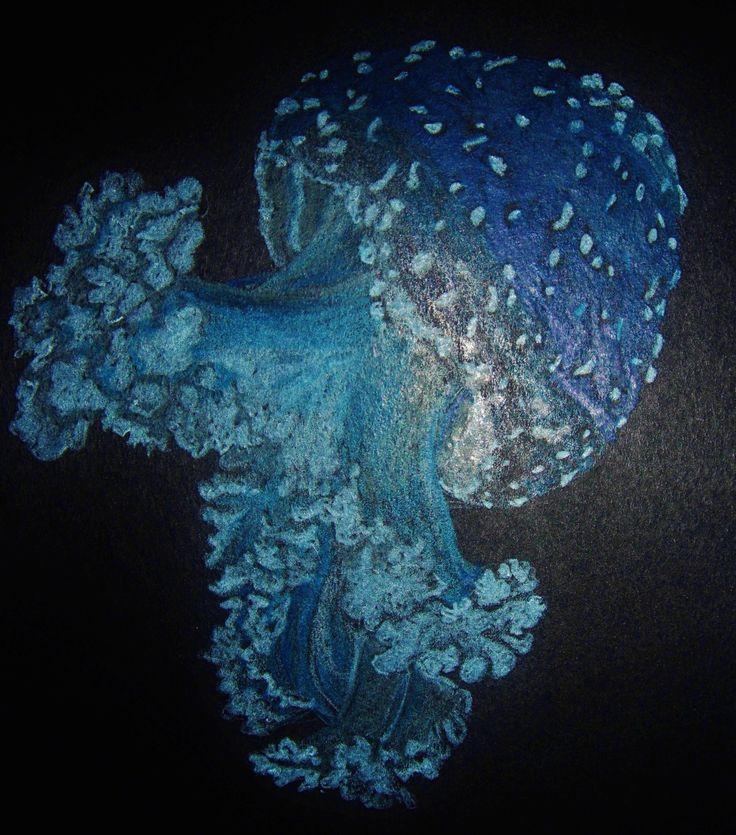 Deep sea jellyfish - coloured pencils on black paper