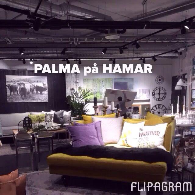 Palma på Hamar