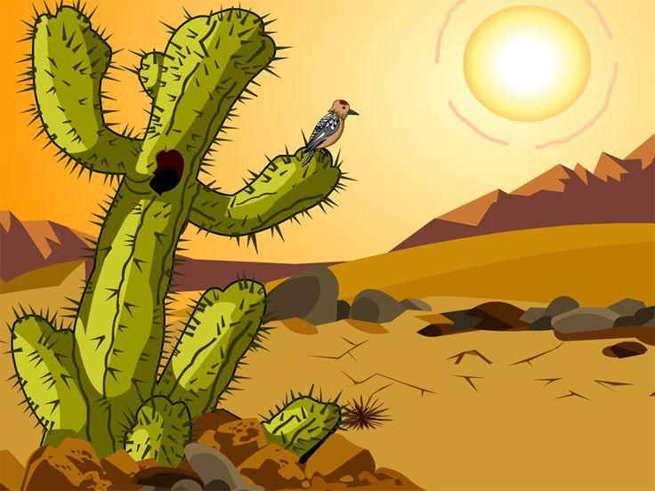 29 best Desert images on Pinterest | Deserts, Desert ...