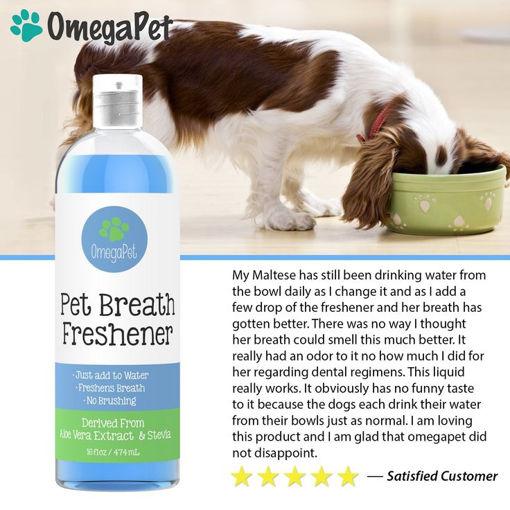 Dog Breath Freshener Water Additive - Fresh Breath for Dogs in a Bottle - From Bad Dog Breath to Smootches in Days