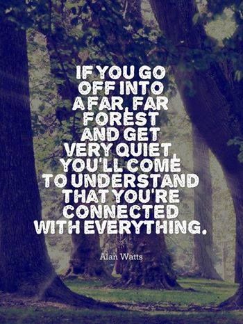 Alan Watts.  comment: because something will come out of the dark and eat you.