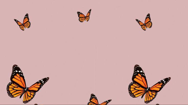 Butterfly Background Cute Desktop Wallpaper Computer Wallpaper Desktop Wallpapers Cute Laptop Wallpaper