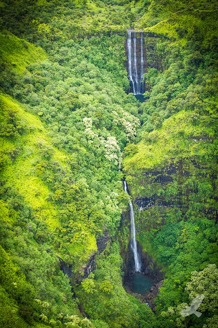 Welcome to Jurassic Park, Kauai, Hawaii. Yes it is true Jurassic park was filmed here