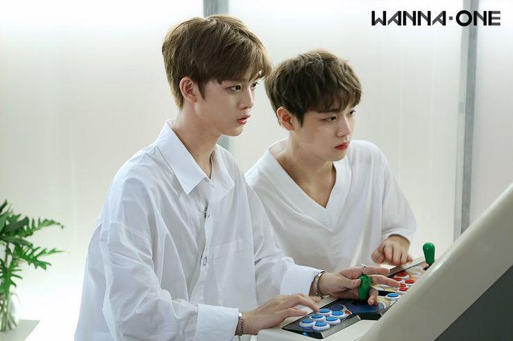 Park Ji-hoon 박지훈♡ 배진영  Bae Jin-young WinkDeep  Wanna One (@WannaOne_twt)