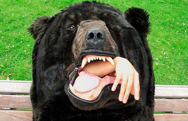 Nadie se atreverá a despertarte con este saco de dormir. Quizá sólo otro oso. http://ift.tt/2ft0vS8