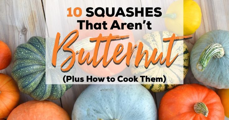 Butternut squash is a popular Paleo food, but there's more to squash than butternut alone. These 10 winter squash varieties are delicious.