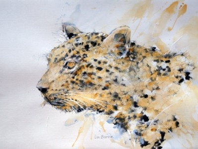 Acrylic sketch by Lin Barrie -for sale on the AWCF website
