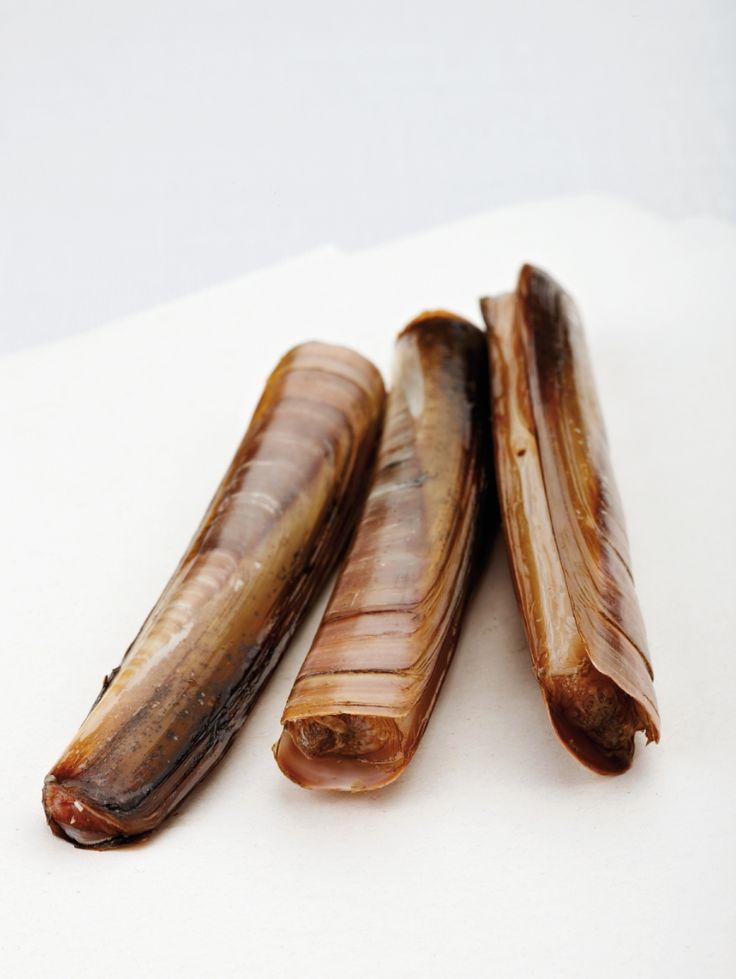 Carpaccio van scheermessen http://njam.tv/recepten/carpaccio-van-scheermessen