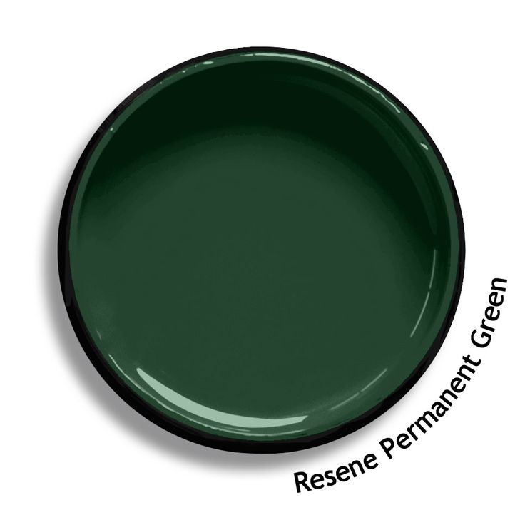 Resene Permanent Green is a traditional clean timber green. From the Resene Roof colours collection. Try a Resene testpot or view a physical sample at your Resene ColorShop or Reseller before making your final colour choice. www.resene.co.nz