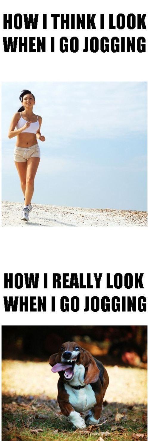 haha the dog looks better then i do when i jog!
