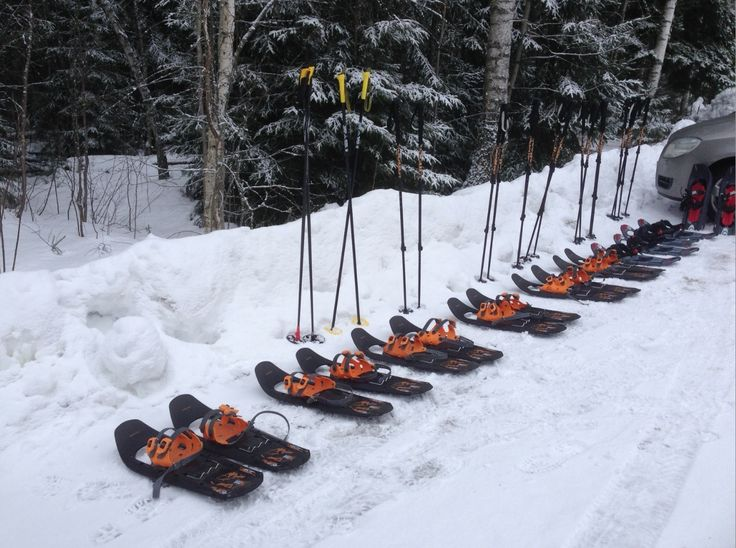 Lumikenkäilylähtö