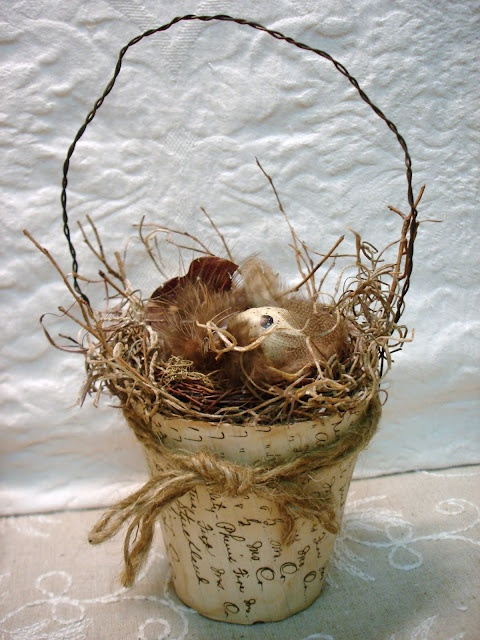 nest in an altered peat pot