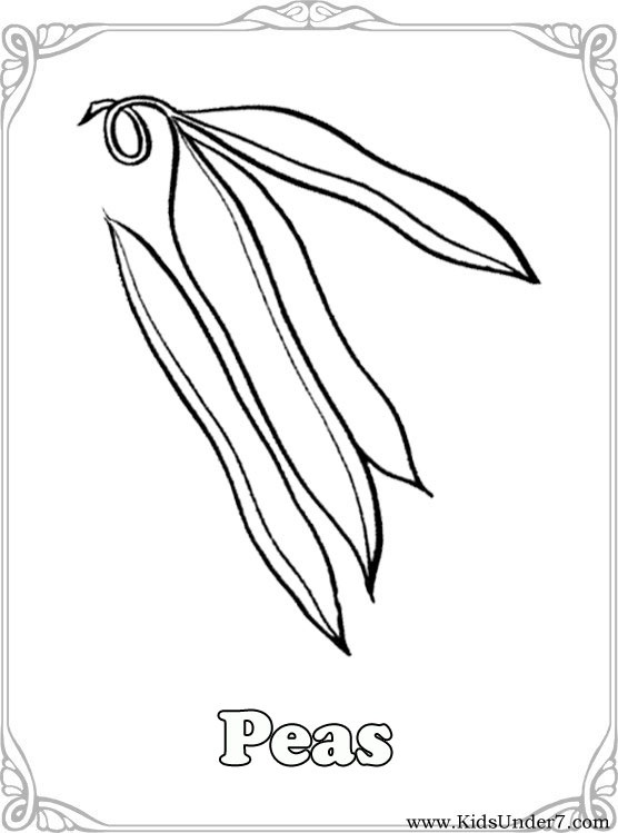76 best fruits, berries and vegetables coloring pages images on ... - Coloring Pages Leafy Vegetables