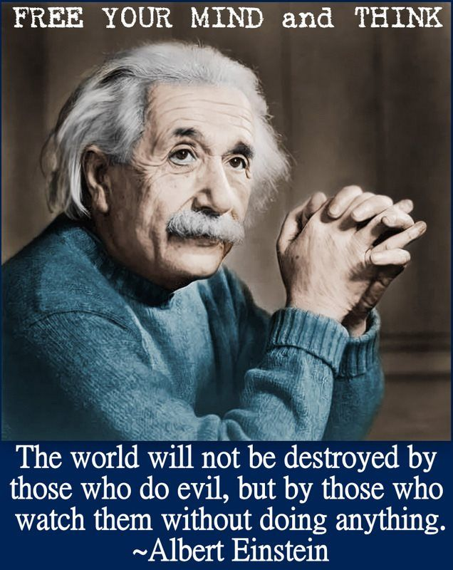 The world will not be destroyed by evil, but by those who watch them without doing anything ~ AE
