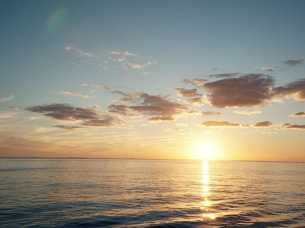 Sail away into the sunset.Sunris Sunsets, Sunsets Dolphins, Sunrises Sunsets