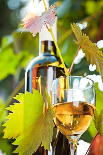 VENTURING VERMENTINO Open up your repertoire with an alternative spring white By Gregory Dal Piaz