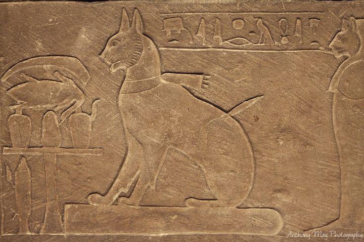 sarcophage du chat domestique du Prince Thutmose, Ta-miou