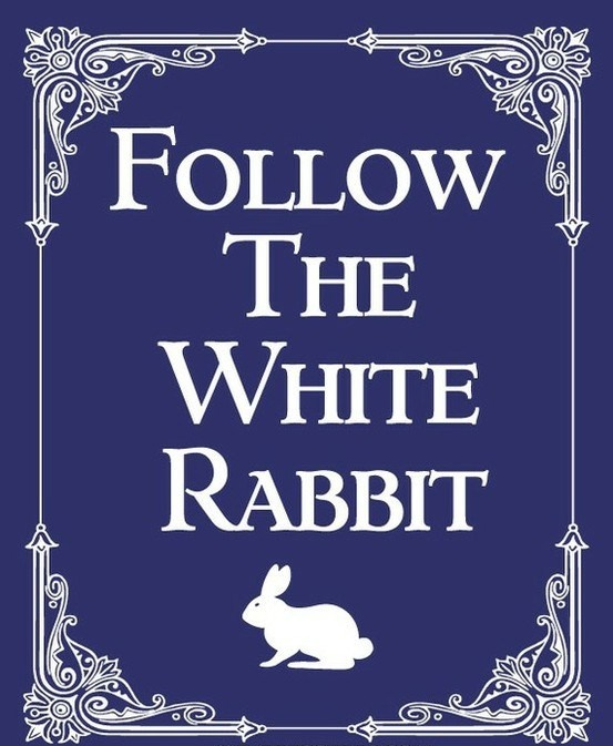follow the white rabbit..