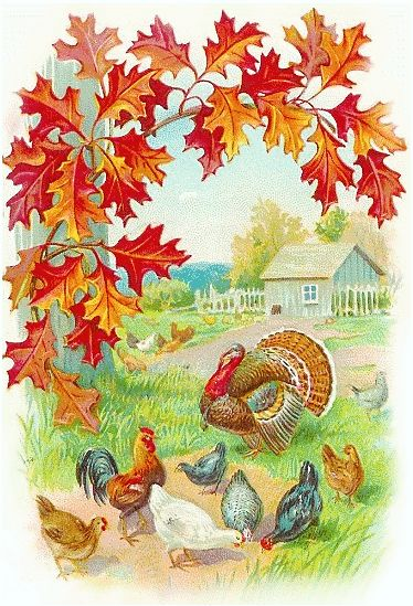 17 Best images about thanksgiving clipart on Pinterest ...