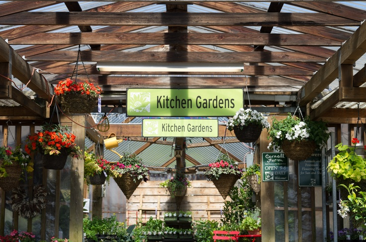 7 best display ideas green goods images on pinterest for Jardin gris voodoo shop conyers