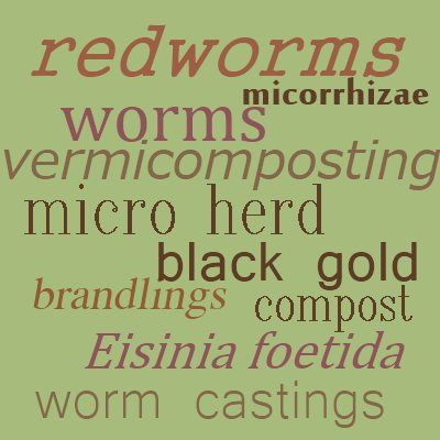 Best Vermicomposting Images On   Worm Composting
