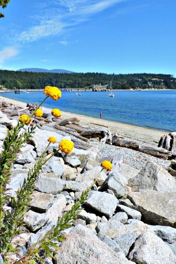 Sechelt - Sunshine Coast, BC -