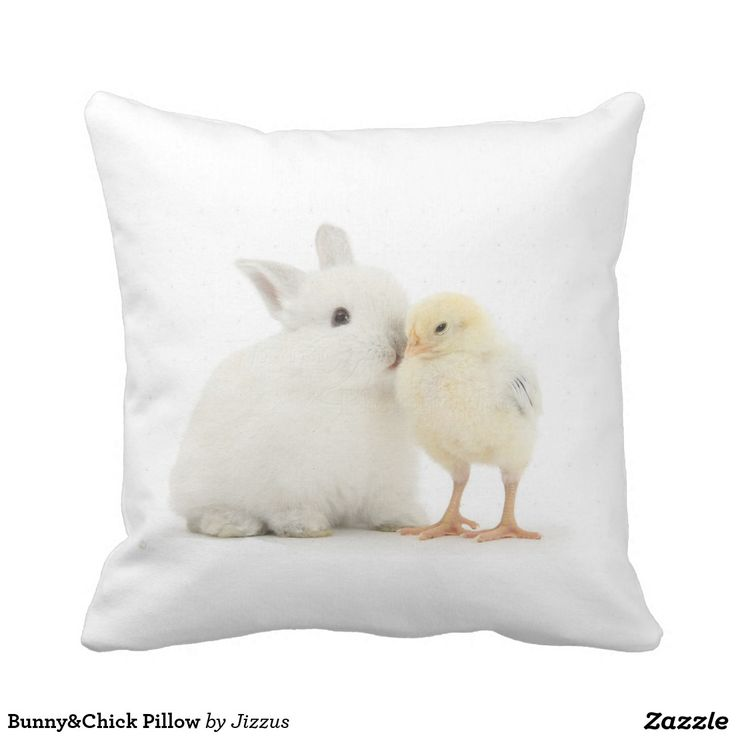 Bunny&Chick Pillow