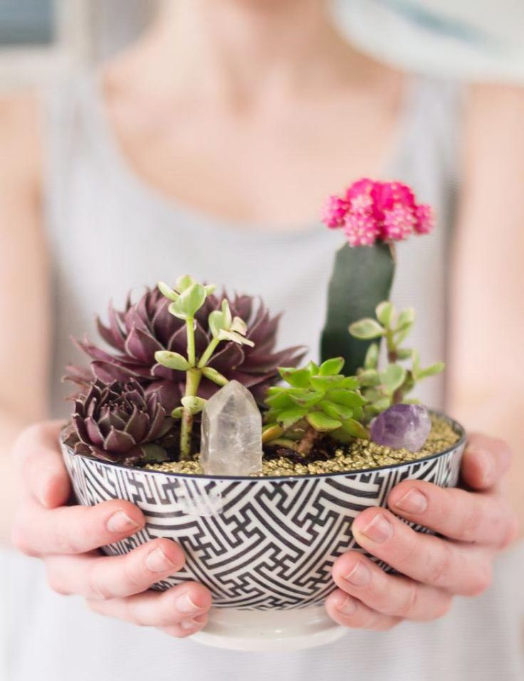 ideias sobre jardins : ideias sobre jardins:1000 ideias sobre Jardins De Fadas De Interior no Pinterest