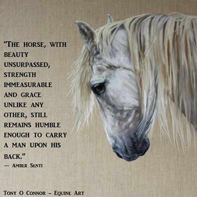 The horse, with beauty unsurpassed, strength immeasurable, and grace unlike any other, still remains humble enough to carry a man upon his back. ~Amber Senti~