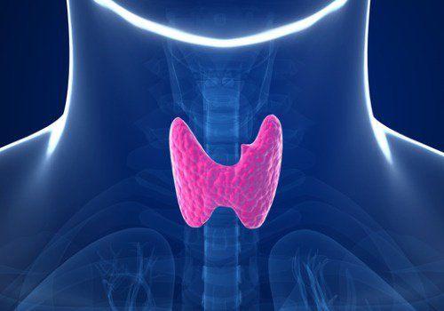 5 hábitos que alteran tu tiroides