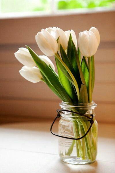 165 besten Vases of roses Bilder auf Pinterest   Schöne rosen, Vasen ...