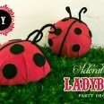 DIY ladybug decor