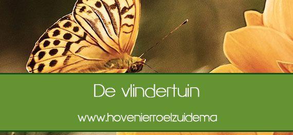 Onderhoud en aanleg van de vlindertuin uitbesteden