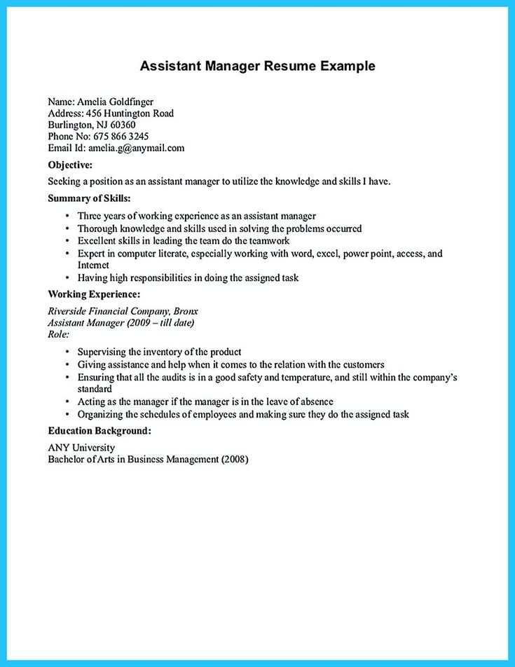nice Store Assistant Manager Resume That Can Bag You,