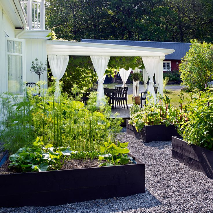 31 best Hochbeet images on Pinterest | Backyard patio, Landscaping ...