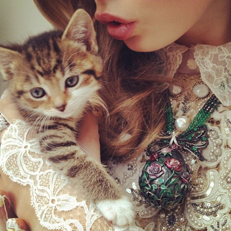 Cat Fashion, Kitty Cat, Delevingne Face, Nick Knights, High Fashion, Photos Shoots, Valentino Couture, Cute Kittens, Fashion Shoots
