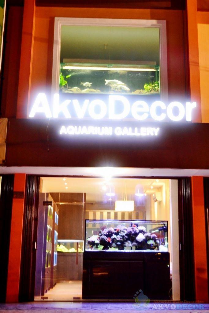 Galeri Aquarium Akvodecor 1