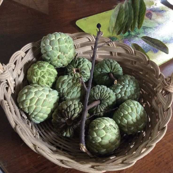 Sugar apple A very sweet tropical fruit with lots of seeds. Found in the Philippines though  Thailand has a different variety.